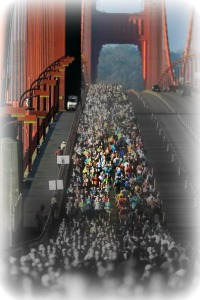 2013+San+Francisco+Marathon+x9iYr6wKrenl